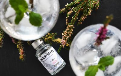 Ginerosity Gin Review