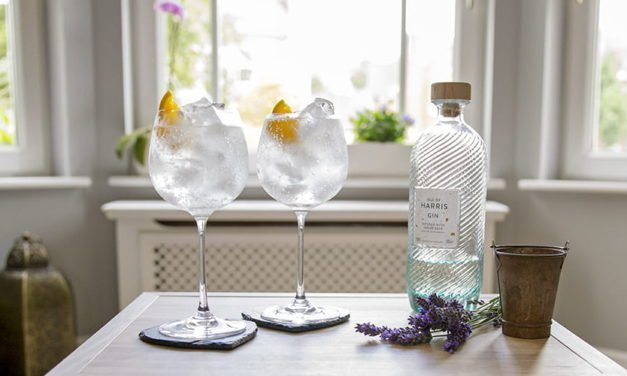 Isle of Harris Gin perfect serve