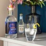HRAFN Gin Valhalla Review